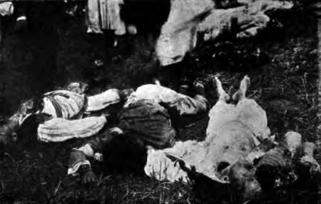 1914. Femei și bătrâni masacrați la Krivaja.
